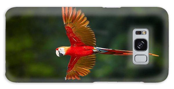 Macaw Galaxy Case - Close Up Ara Macao, Scarlet Macaw, Red by Martin Mecnarowski