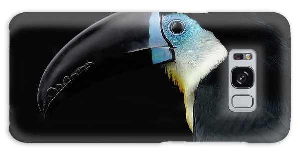 Close-up Channel-billed Toucan, Ramphastos Vitellinus, Isolated On Black Galaxy Case