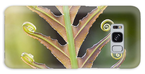 Natural Galaxy Case - Close-up Of A Giant Fern On A Sunny by Artmannwitte