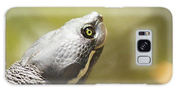 Close Up Of A Turtle. Galaxy Case