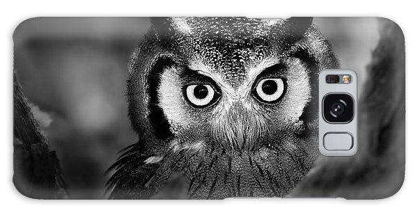 Perches Galaxy Case - Close-up Of A Whitefaced Owl Artistic by Johan Swanepoel