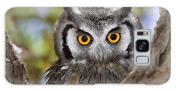 Hiding Galaxy Case - Close-up Of A Whitefaced Owl Otus by Johan Swanepoel
