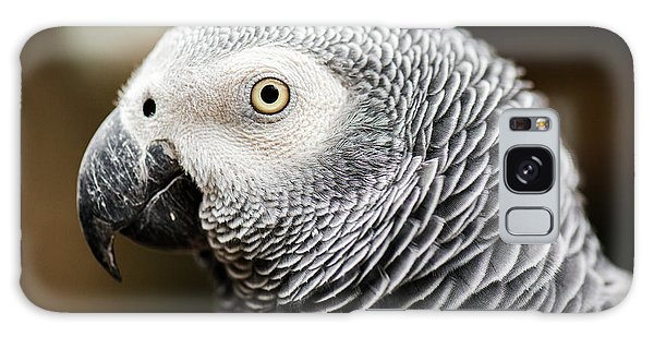 Close Up Of An African Grey Parrot Galaxy Case