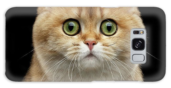 Close-up Portrait Of Golden British Cat With Green Eyes Galaxy Case