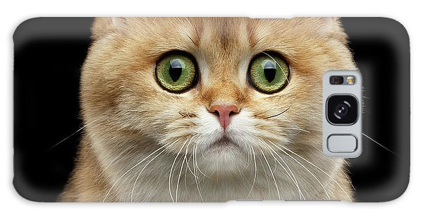Cat Galaxy S8 Case - Close-up Portrait Of Golden British Cat With Green Eyes by Sergey Taran