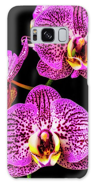 Orchidaceae Galaxy Case - Close Up Purple White Orchids by Garry Gay
