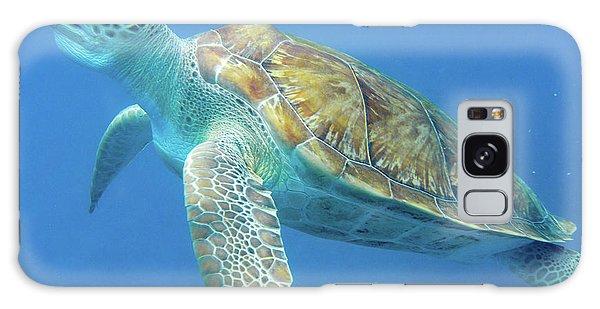 Close Up Sea Turtle Galaxy Case