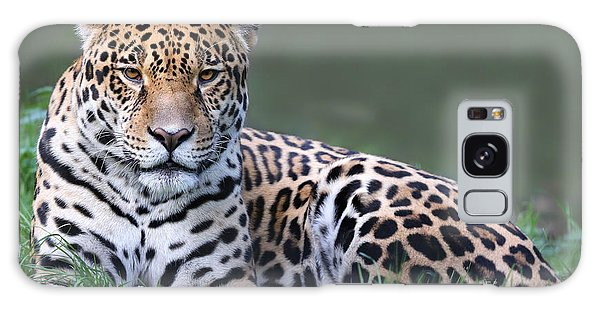 Powerful Galaxy Case - Close-up View Of A Jaguar Panthera Onca by Henner Damke