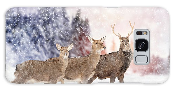 White-tailed Deer Galaxy Case - Close Young Deer In Nature. Winter Time by Volodymyr Burdiak