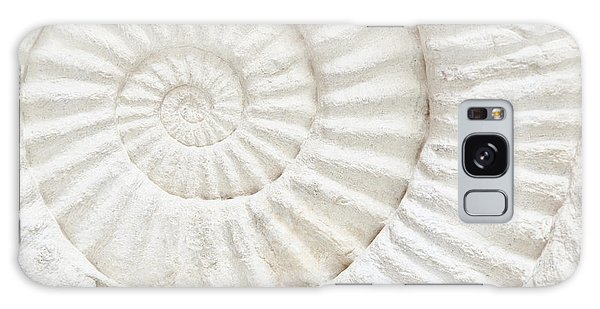 Geology Galaxy Case - Closeup Of An Ammonite Prehistoric by Chatchai Somwat