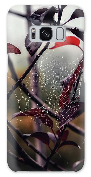 Cobweb Galaxy Case