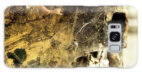 Cobweb Galaxy Case