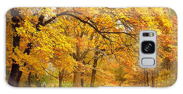 Environments Galaxy Case - Collection Of Beautiful Colorful Autumn by Taiga