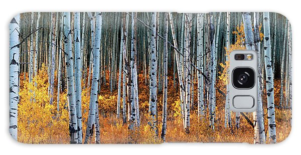 Colorado Autumn Wonder Panorama Galaxy Case