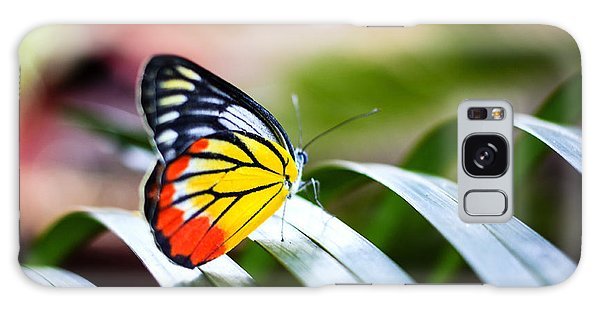 No People Galaxy Case - Colorful Butterfly Resting On The Palm by Rrrainbow
