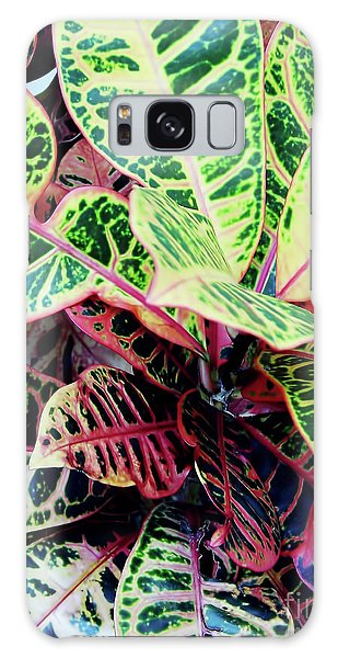 Colorful - Croton - Plant Galaxy Case