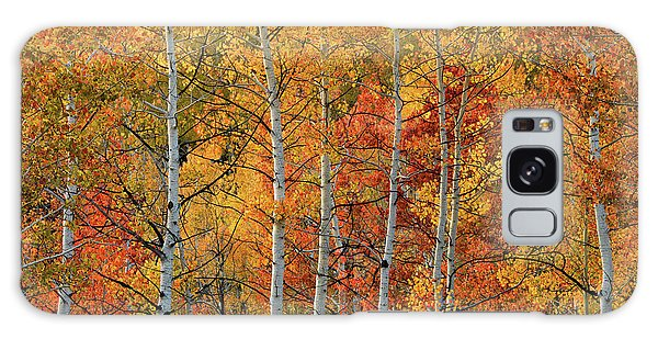 Colorful Glow Of Autumn Galaxy Case