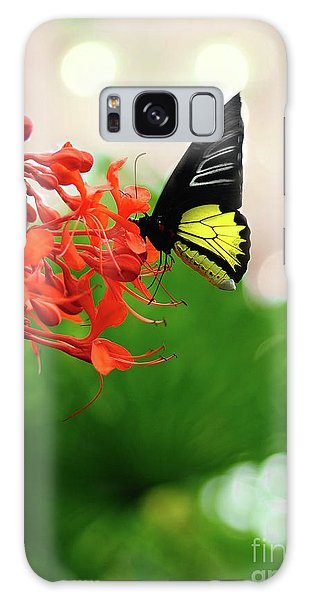 Common  Birdwing Galaxy Case