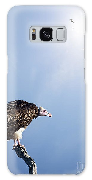 Perches Galaxy Case - Conceptual - Vultures Waiting To Prey by Johan Swanepoel