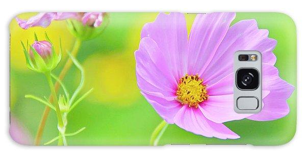 Cosmos Flower In Full Bloom, Bud Galaxy Case
