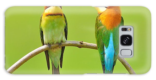 Ecology Galaxy Case - Couple Of Bee Eater Bird by Butterfly Hunter