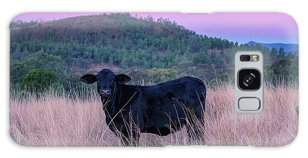 Cow Outside In The Paddock Galaxy Case