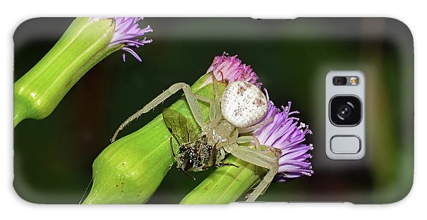 Crab Spider With Bee Galaxy Case