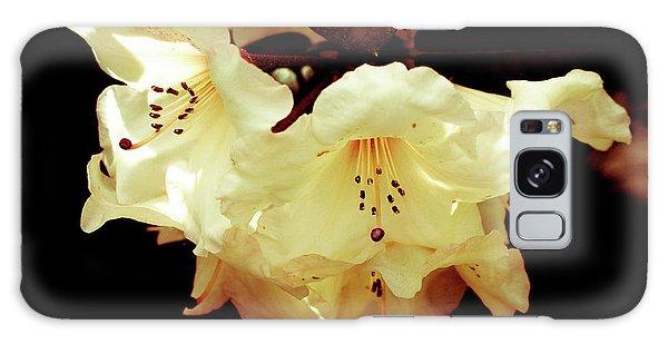 Creamy Rhododendron Galaxy Case