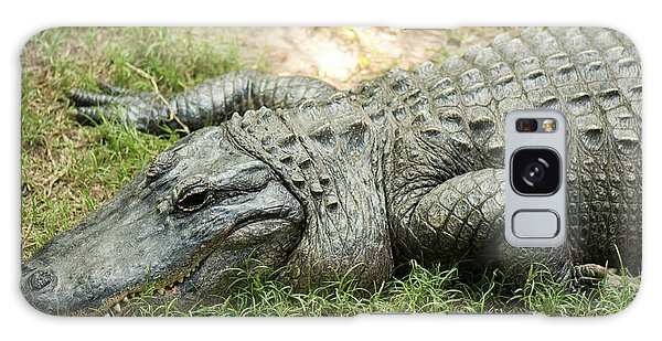 Galaxy Case featuring the photograph Crocodile Outside by Rob D