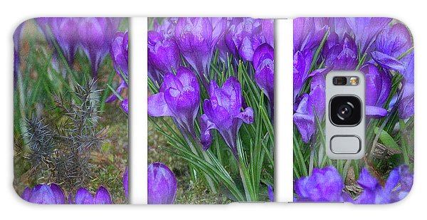 Galaxy Case featuring the photograph Crocus Triptych by Ann Jacobson