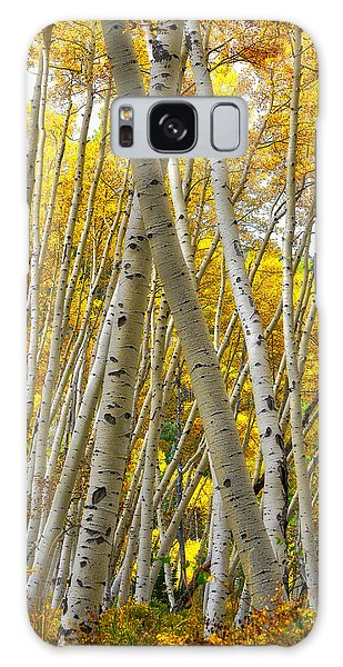 Crossed Aspens Galaxy Case