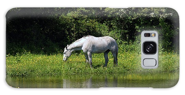Cumbria. Ulverston. Horse By The Canal Galaxy Case