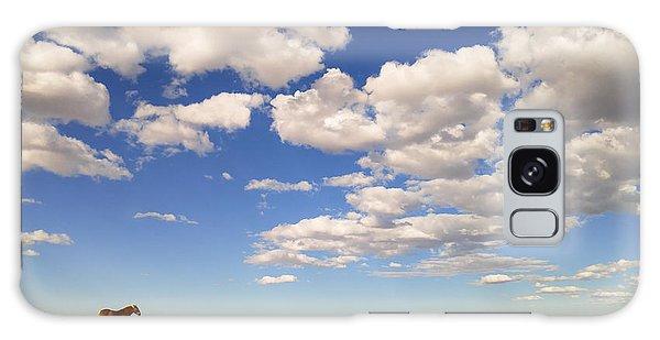 Cumulus Galaxy Case