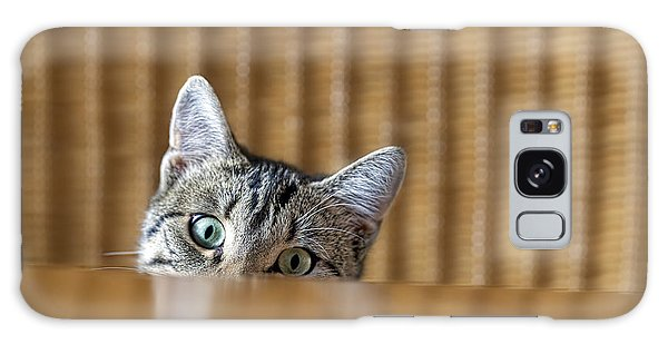 Claws Galaxy Case - Curious Young Kitten Looking Over A by Dirk Ott