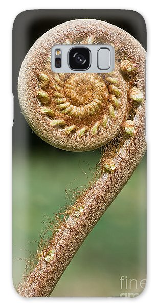 New Leaf Galaxy Case - Curled Young Fern by Kurt g