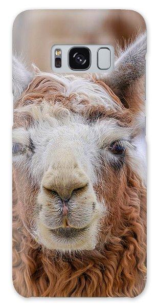 Cute Llama Galaxy Case