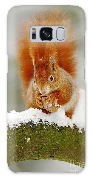 Furry Galaxy S8 Case - Cute Red Squirrel Eats A Nut In Winter by Ondrej Prosicky
