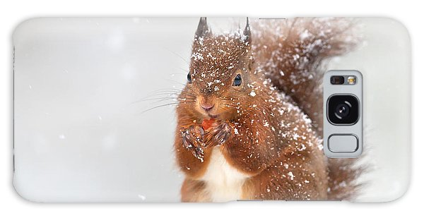 Claws Galaxy Case - Cute Red Squirrel In The Falling Snow by Giedriius