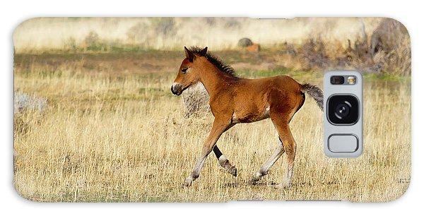 Cute Wild Bay Foal Galloping Across A Field Galaxy Case