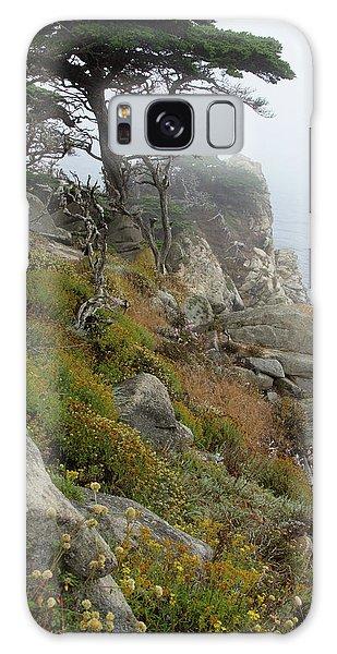 Cypress Cliff Galaxy Case