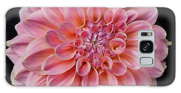 Galaxy Case featuring the photograph Dahlia  by Ann Jacobson
