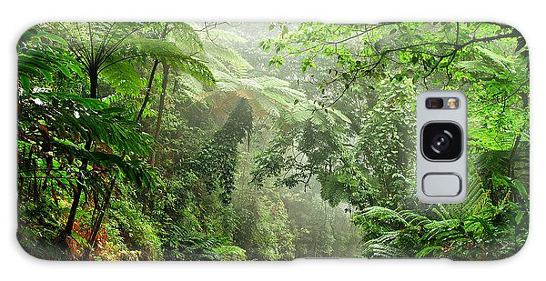 Scenery Galaxy Case - Daintree National Park, Queensland by Australiancamera
