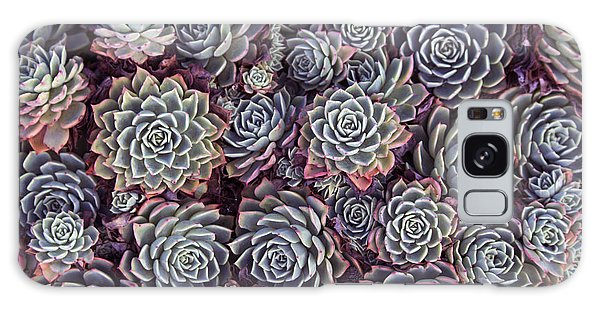Form Galaxy Case - Dainty Succulents With Thick Skin Or by Alybaba