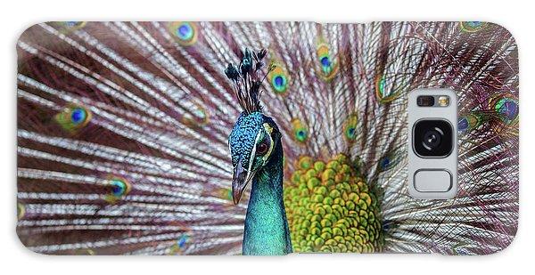 Dancing Indian Peacock  Galaxy Case