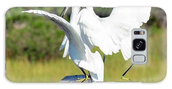 Dancing Snowy Egrets Galaxy Case