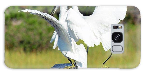 Dancing Snowy Egrets Galaxy Case
