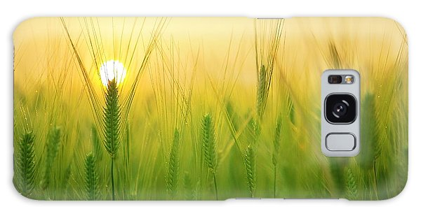 Dawn At The Wheat Field Galaxy Case