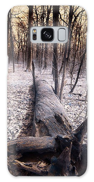 Dead Tree Galaxy Case