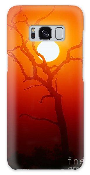Dusk Galaxy Case - Dead Tree Silhouette With Dusty Sunset by Johan Swanepoel