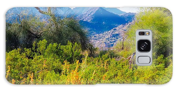 Deep Desert Valley In A Sonoran Desert Spring Galaxy Case
